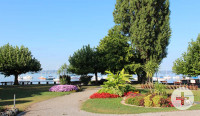 Uferpromenade mit Frühlingsblumen