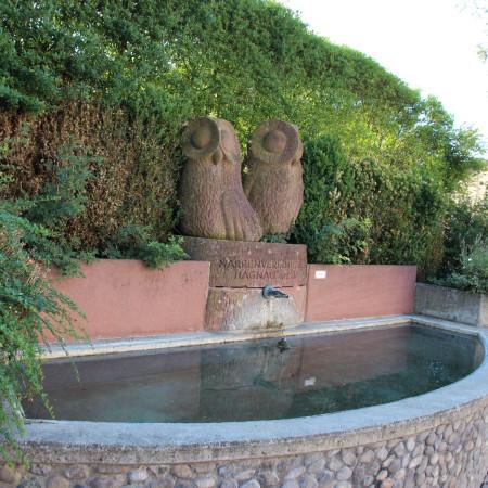 Eulen Brunnen