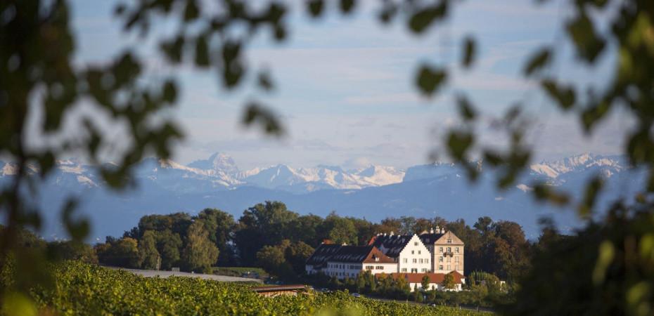 Aussicht auf Schloss Kirchberg